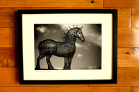 Heavy Horse £49  framed print